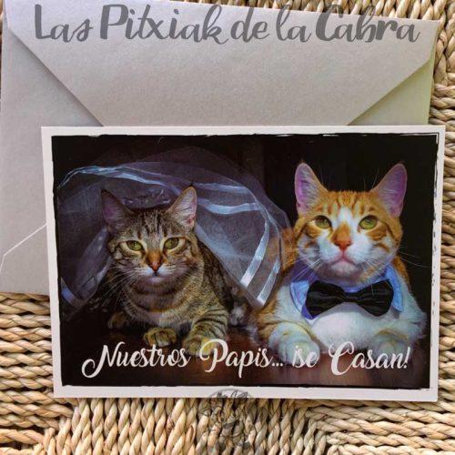 Invitación de boda postal de gatos disfrazados nuestros papis se casan