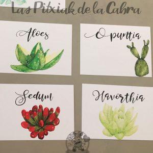Meseros para bodas con plantas cactus y suculentas